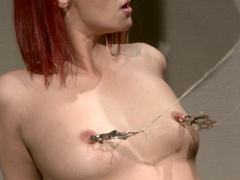 BDSM whore Krisztin under total fucking control